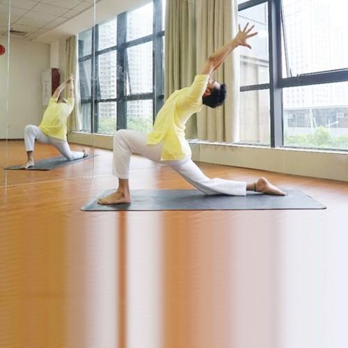 印度瑜伽大師